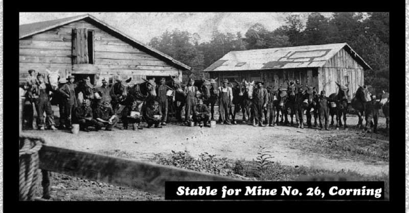 mine26stable